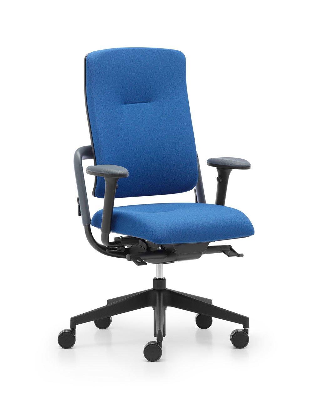 Grahl Xenium Black Edition Solid Back Chair Online Ergonomics – Grahl Chair